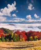 Färgrikt höstlandskap i bergbyn dimmig morgon Royaltyfri Foto