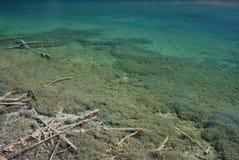 färgrikt jiuzhaivatten för härligt porslin Royaltyfri Foto