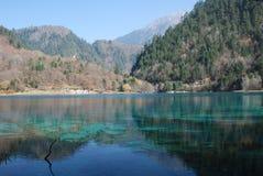 färgrikt jiuzhaivatten för härligt porslin Royaltyfri Fotografi