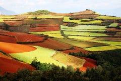 färgrikt land Arkivbilder