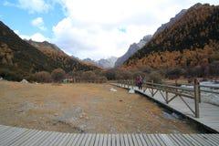 Färgrikt landskap i porslin Arkivbild