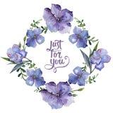 Färgrikt lin Blom- botanisk blomma Fyrkant för ramgränsprydnad vektor illustrationer