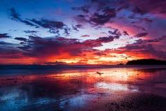 Färgrikt på stranden Fotografering för Bildbyråer