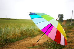 färgrikt paraply Royaltyfria Bilder