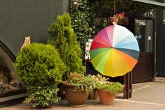Färgrikt paraply på ingången till shoppa Royaltyfri Bild