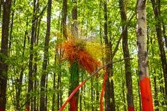 Färgrikt rede på det målade trädet i den färgrika skogen eller Padurea Colorata från Poienari, Rumänien royaltyfri bild