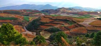 Färgrikt ris terrasserar ii i det yunnan landskapet, Kina fotografering för bildbyråer