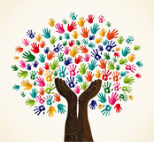 Färgrikt solidaritetdesignträd stock illustrationer