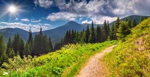 Färgrikt sommarlandskap i berg Fotografering för Bildbyråer