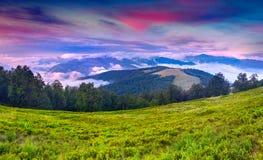 Färgrikt sommarlandskap i bergen. Arkivbilder