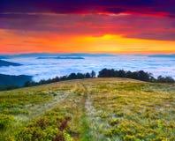 Färgrikt sommarlandskap i de Carpathian bergen. Arkivbilder