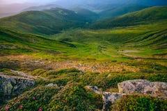 Färgrikt sommarlandskap i de Carpathian bergen Royaltyfria Bilder