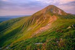 Färgrikt sommarlandskap i de Carpathian bergen Arkivbilder