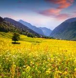 Färgrikt sommarlandskap i Kaukasus berg Arkivfoton