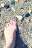 Färgrikt spikar på sanden arkivbilder