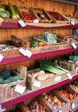 Färgrikt stånd som är fullt av sunda grönsaker - England, U K royaltyfri bild