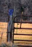 Färgrikt staket Post Royaltyfri Foto