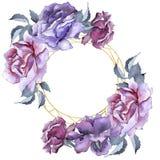 färgrikt steg Blom- botanisk blomma Fyrkant för ramgränsprydnad Royaltyfri Bild