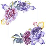 färgrikt steg Blom- botanisk blomma Fyrkant för ramgränsprydnad Royaltyfri Foto