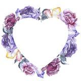 färgrikt steg Blom- botanisk blomma Fyrkant för ramgränsprydnad Royaltyfria Bilder
