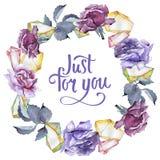 färgrikt steg Blom- botanisk blomma Fyrkant för ramgränsprydnad Royaltyfri Fotografi
