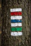 Färgrikt tecken för att fotvandra Fotografering för Bildbyråer