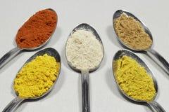 Färgrikt val av kryddapulver arkivfoto