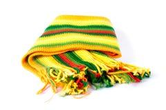 färgscarf Royaltyfria Bilder