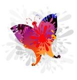 Färgstänk & Butterly-vektor vektor illustrationer