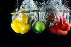 Färgstänkgrönsaker Fotografering för Bildbyråer