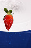 färgstänkjordgubbe arkivfoton