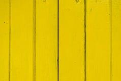 Färgträ Arkivbild