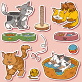 Färguppsättning av gulliga katter och objekt Arkivfoto