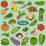 Färguppsättning med grönsaker, vektortecknad filmklistermärkear vektor illustrationer