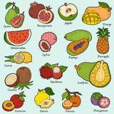 Färguppsättning med tropiska frukter, vektortecknad filmklistermärkear royaltyfri illustrationer
