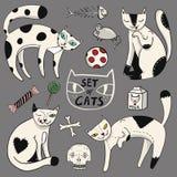 Färguppsättningen av fyra katter, godis, mjölkar, musen, fisken, bollen, ben och skallen i tecknad filmstil Royaltyfria Foton