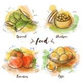 Färguppsättningen av vegetarisk mat skissar in diagrammet royaltyfri bild