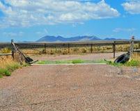 Färist med en Mountain View Fotografering för Bildbyråer