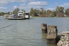 Färja på Mannum, Murray River, södra Australien Arkivbild