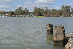 Färja på Mannum, Murray River, södra Australien Royaltyfri Foto
