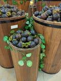 Fässer der Mangostanfrucht Lizenzfreie Stockfotografie