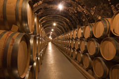 Fässer Wein im Keller Stockbild