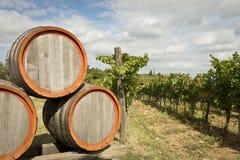 Fässer Wein im Weinberg Stockbild