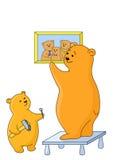 fäst björnbilden Royaltyfri Fotografi