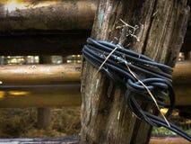 Fäst det svarta tråd- och bambustaketet royaltyfria foton