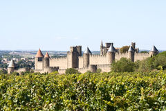 Fästning av Carcassonne och vingården Fotografering för Bildbyråer