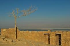 Fästning av Masada i Israel Royaltyfria Foton