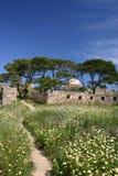 fästning gammala rethimno Royaltyfri Fotografi