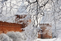 fästning smolensk arkivbilder