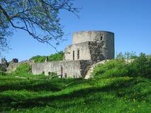 fästningkoporye Royaltyfri Bild
